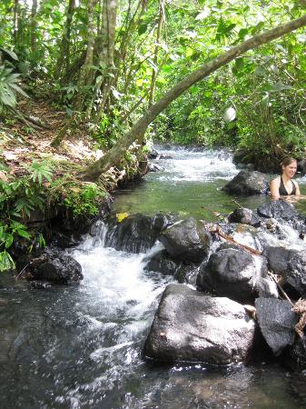 La Fortuna de San Carlos, Costa Rica: free hot springs 1