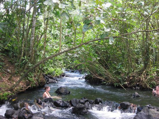 Фортуна-де-ла-Сан-Карлос, Коста-Рика: free hot springs 2