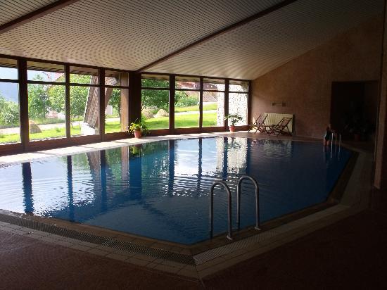 Marco Polo Hotel Gudauri: Swimming pool (2)
