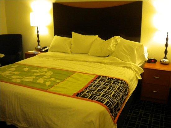 查塔努加萬豪費爾菲爾德套房飯店照片