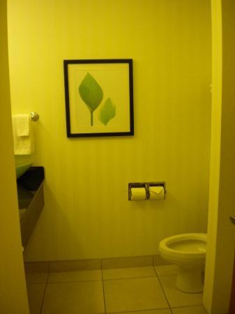 Fairfield Inn & Suites Chattanooga I-24/Lookout Mountain: Toilet