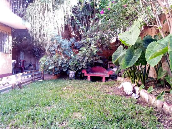 A Place to Stay Hotel: garden