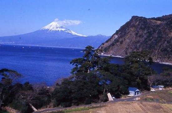 Numazu, Japón: 沼津市, 井田地区から見下ろす沼津市方面