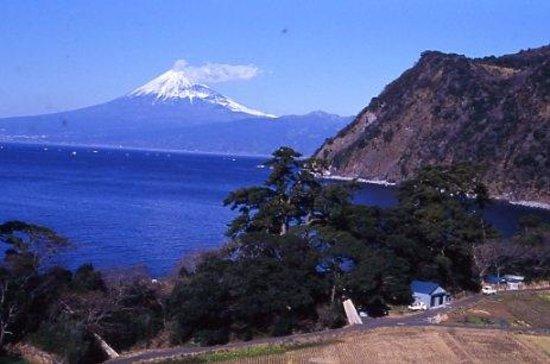 Numazu, Japan: 沼津市, 井田地区から見下ろす沼津市方面