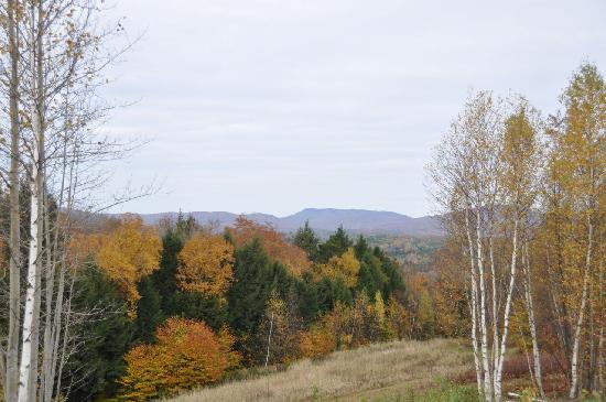 Muddy Moose: The beginning of fall foliage as seen from cabin 1