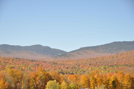 Fall foliage in full bloom.  This is the view just before you arrive at Muddy Moose.
