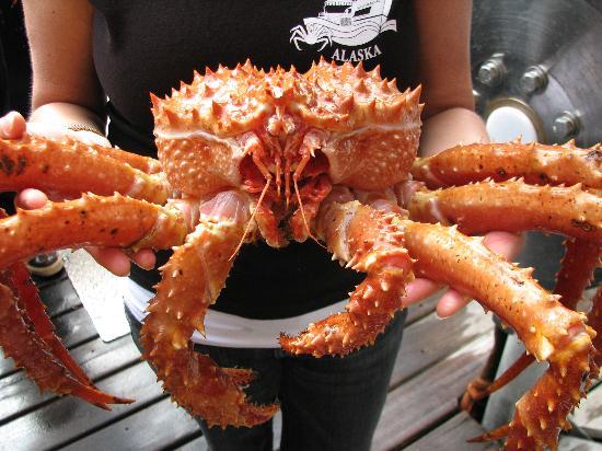 Bering Sea Crab Tour Ketchikan Alaska