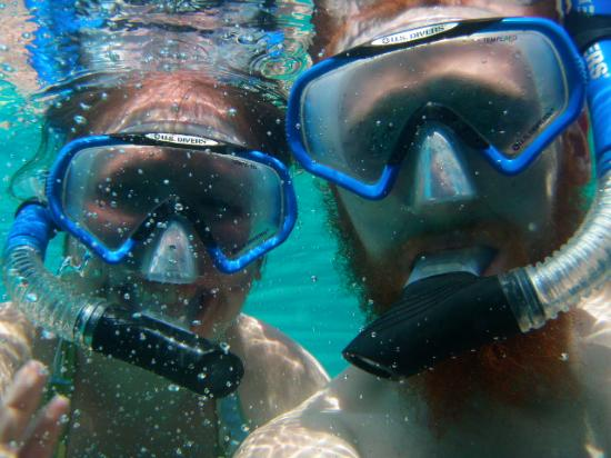 Surfers Haven Guesthouse: snorkeling