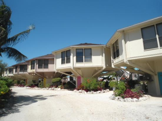 Reef Resort: villas