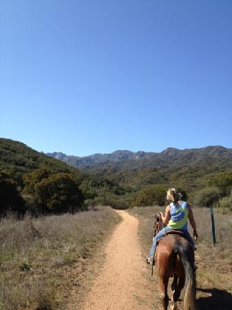 Ojai Valley Trail Riding Company : great view, great guide!!