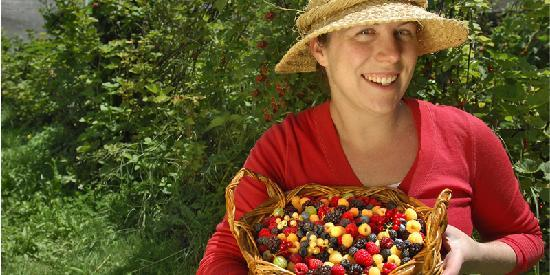 Allambee South, Australia: Pick your own berries