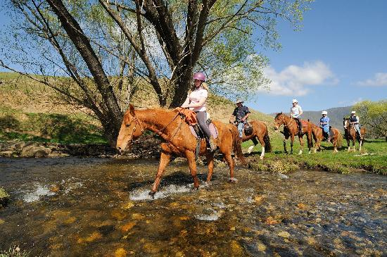 Benambra, Austrália: Horse riding in Gippsland's high country