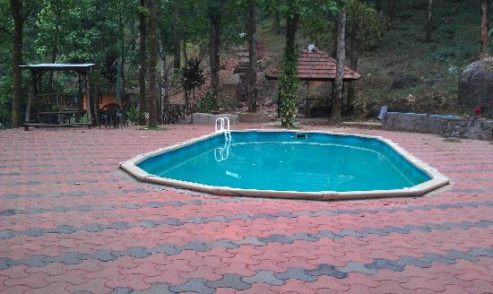 The Swimming Pool Picture Of Blue Ginger Spa Resorts Wayanad Vythiri Tripadvisor