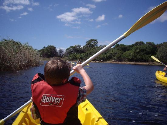 Walker Bay Adventures: Klein River Kayaking