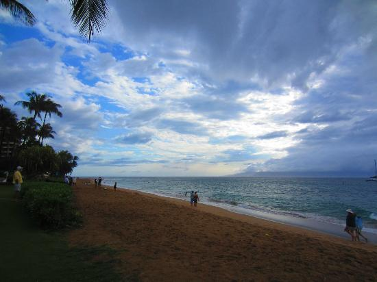 Wailea Beach: Just another gorgeous day!