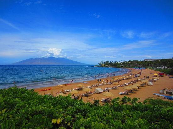 Wailea Beach: near the four seasons