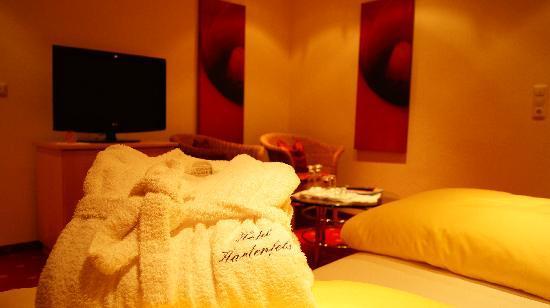 Hotel Hartenfels: Doppelzimmer