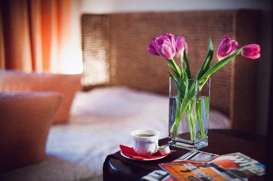 Nevsky Contour Hotel: Standard Double Room