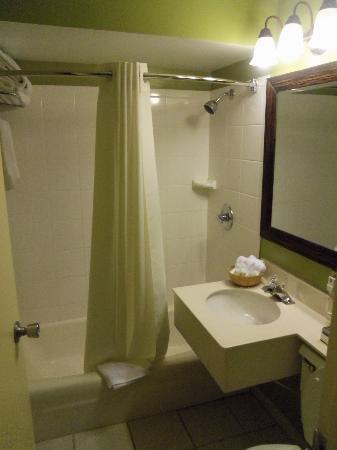 Super 8 Lake George/Downtown: Bathroom