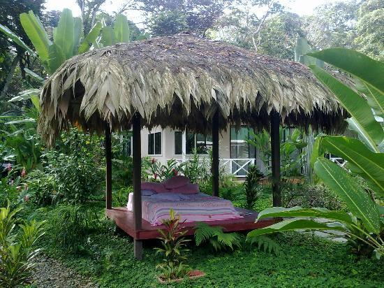 VIP Hotel Playa Negra: más sueños...