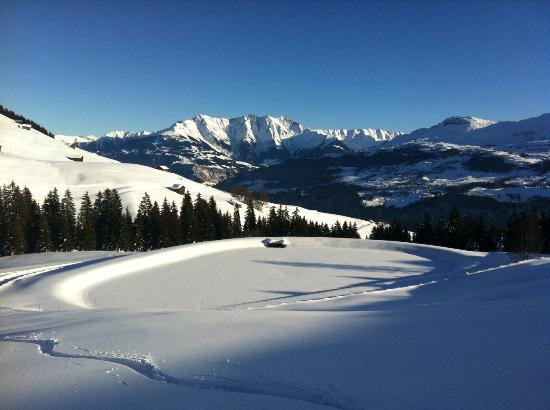 Biohotel Ucliva : snow alps grisons