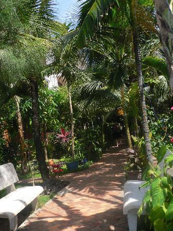 هوانج كيم جولدن ريزورت: Garden