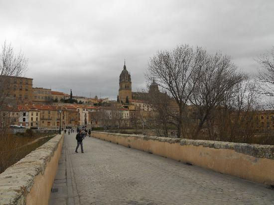 Salamanca, Spain: Cathedral on the hill above Puente Romano