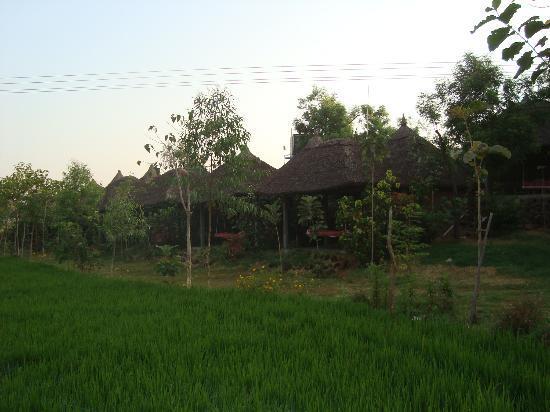 Shanthi Guesthouse: Riverside cottages