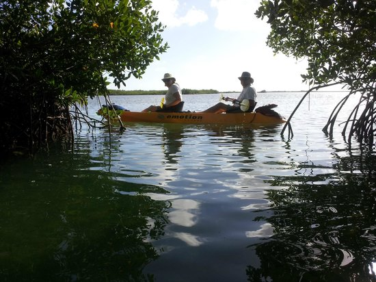 ‪Florida Keys Kayaks and Eco Tours‬