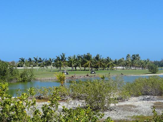 Carib Club : great view of the golf course