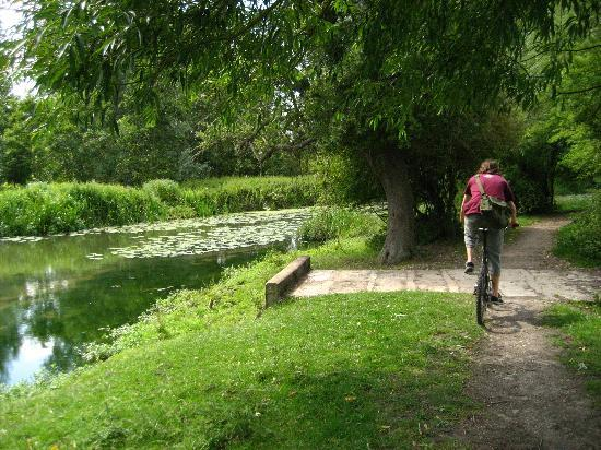 Bainton Bikes Cycle Hire & Tours: 3