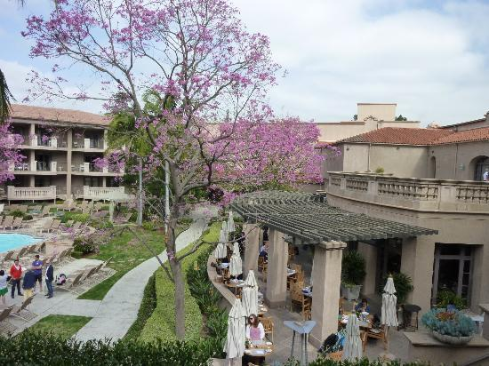 Picture of the terrace at the langham pasadena for 1433 langham terrace