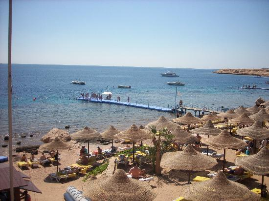 Concorde El Salam Front Hotel: The Beach.