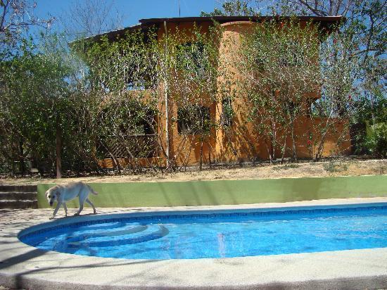 Cabinas La Playa : main house and pool