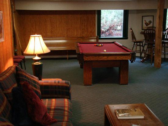 Highland Lake Inn & Resort Hendersonville: Game room, The Lodge, lower level.