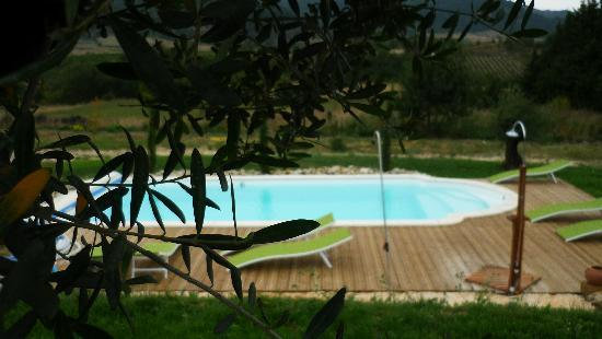 Relais de l'Alsou: piscine pool