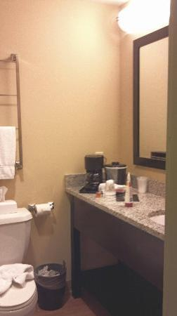 La Quinta Inn & Suites Brooklyn Downtown: Bathroom