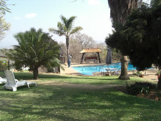 Ostrich Manor : Swimming Pool