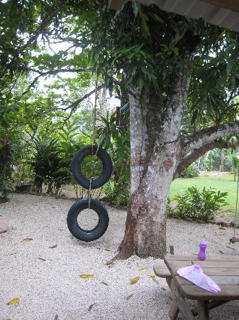 Belize Jungle Dome: The tire swing, which was very popular with the children.