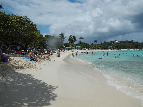 Shire Beach St Thomas Picture Of East End