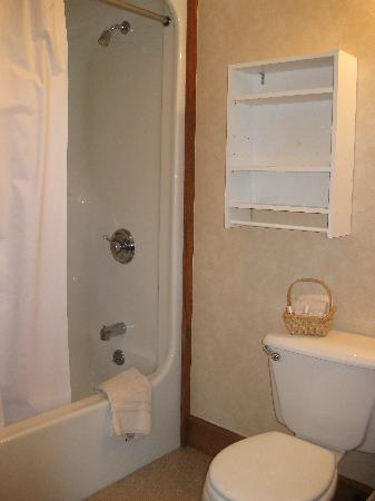 The Chatham Motel: Bathroom