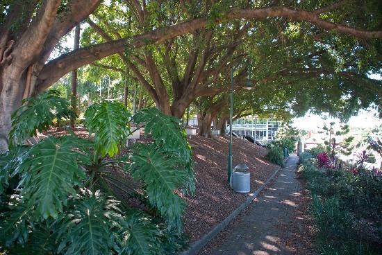 South Brisbane Memorial Park: A nice little park in South Brisbane