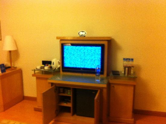Park Plaza Hotel Gurgaon: TV