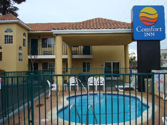 "Comfort Inn Beach/Boardwalk Area: ""A clean pool in March?  Good sign"""