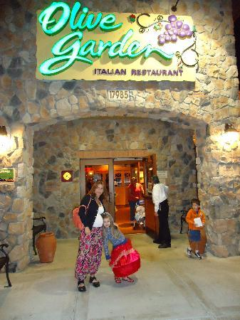 Olive garden picture of olive garden miami tripadvisor - Olive garden reservations policy ...