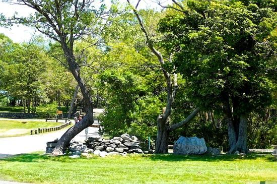 Slater Memorial Park: Summer by-inspired-shots photography