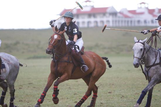 Estancia VIK Jose Ignacio: Polo practice