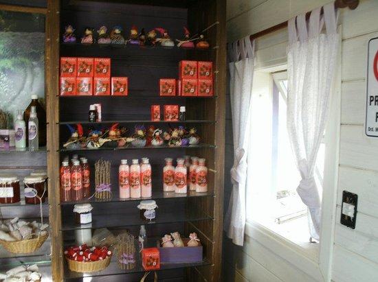 Punto Panorámico (Mirador & Bar): Inside