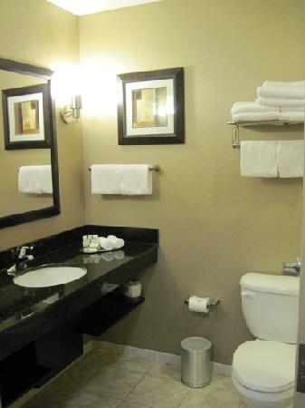 بست ويسترن بريمير مطار ميامي الدولي هوتل آند سويتس: Clean, spacious bathroom, w/ shelf under sink