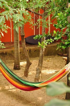 Hostel Esperanza: garden